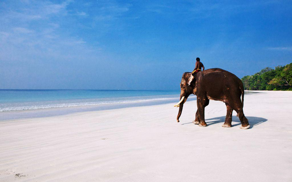 andaman-travel-guide-havelock-neil-and-port-blair